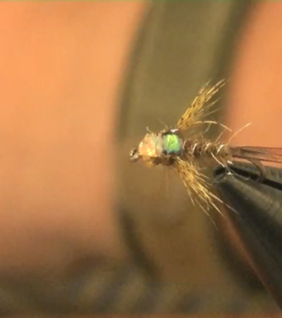 Tim's TV fly, Tungsten Variant