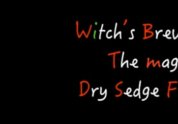 Witch's Brew, the magic Dry Sedge Fly.